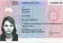 صورة كيفية الحصول علي الجنسية البلجيكية علي حسب نوع الاقامة عام 2020