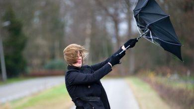 صورة حالة الطقس في بلجيكا .. رياح تصل سرعتها إلى 90 كم في الساعة