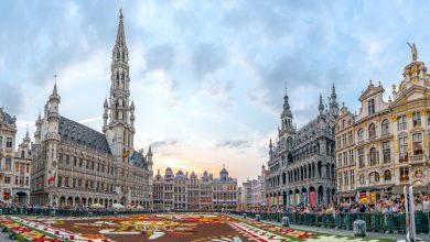 صورة معلومات عن بلجيكا وأخر تحديث لعدد السكان في عام 2020