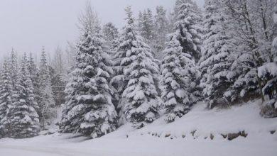 صورة حالة الطقس في بلجيكا وهناك توقعات بسقوط الثلوج في بعض المقاطعات