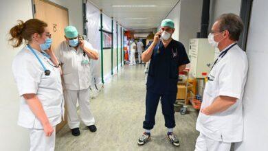صورة اخبار بلجيكا اليوم ، تقرير أعداد اصابات ووفيات فيروس كورونا في بلجيكا