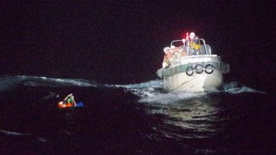 Photo of فقدان سفينة شحن بطاقم مكون من 43 رجل و 5800 رأس ماشية قبالة سواحل اليابان