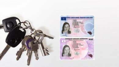 Photo of أخبار بلجيكا الأن .. رخصة قيادة مجانية للباحثين عن عمل في القسم الوالوني