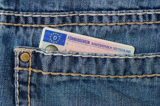 رخصة هولندا