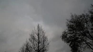 الطقس في بلجيكا