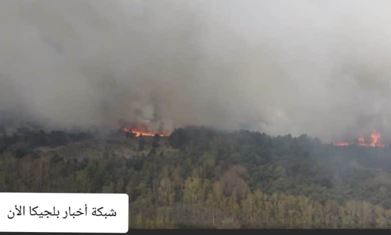 حريق في بلجيكا