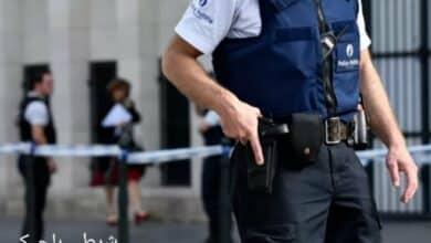 ضابط شركة في بلجيكا