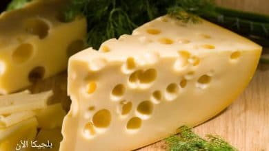 ألماني يحاول تهريب 100 كيلوغرام من الجبن السويسري عبر الحدود