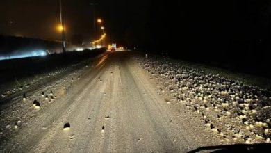 مزارع بلجيكي يفقد محصول البطاطس في الشارع لمسافة 2 كيلومتر