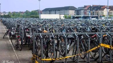 الحكم على سارق دراجات محترف بالسجن والغرامة في بلجيكا